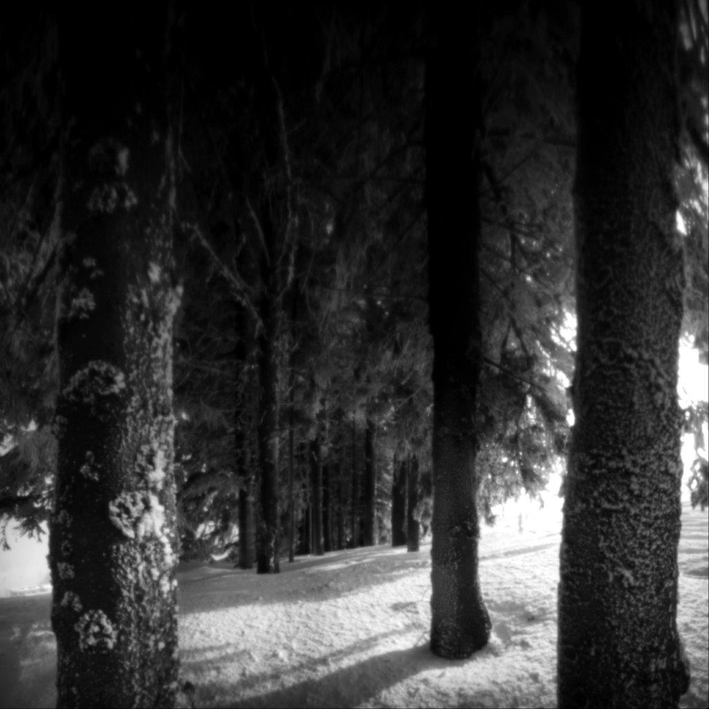 Vinter Pinhole (2)